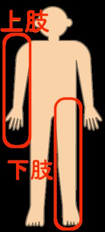 障害者手帳の種類,上肢下肢